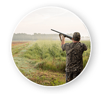 South Dakota Dove Hunts